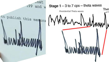 Here Trump's signature can clearly be seen in his Theta wave patterns.